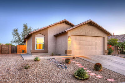 Tucson Single Family Home For Sale: 3180 W Vuelta De Los Mineros