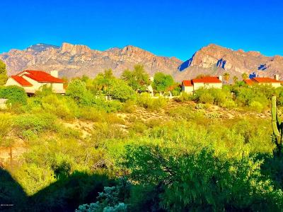 Pima County Single Family Home For Sale: 11550 N Eagle Peak Drive