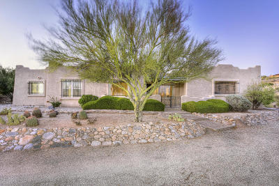 Tucson Single Family Home For Sale: 4080 N Sierra Chapita