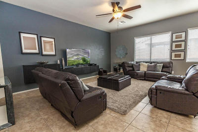 Tucson Single Family Home For Sale: 8271 W Calle Sancho Panza