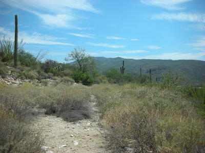 Tucson Residential Lots & Land Active Contingent: 12243 E Mira Vista Canyon Place #9