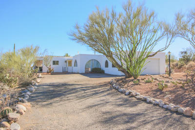 Tucson Single Family Home For Sale: 7001 N Camino De Fosforo