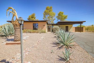Tucson Single Family Home For Sale: 1821 S Breton Place