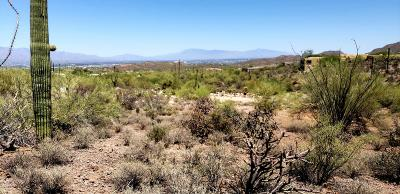 Tucson Residential Lots & Land For Sale: 5085 W Trails End Road #21