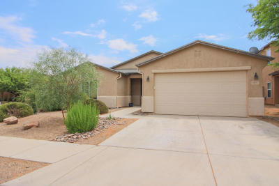 Pima County Single Family Home For Sale: 6871 S Martlet Drive