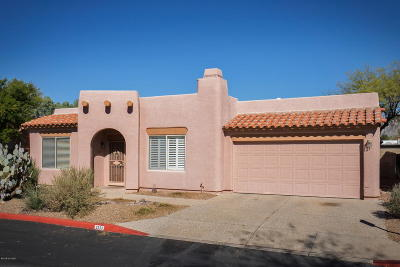 Pima County Single Family Home For Sale: 3777 N Bay Horse Loop