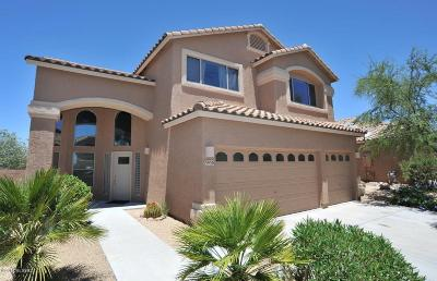 Tucson Single Family Home For Sale: 3950 S Rocky Peak Court