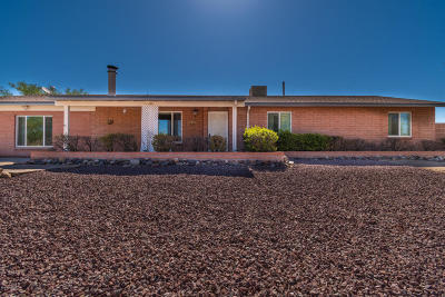 Tucson Single Family Home For Sale: 9840 N Calle Solano