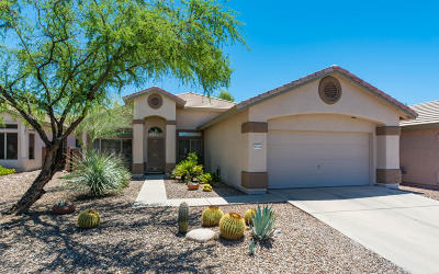 Pima County Single Family Home Active Contingent: 11116 N Eagle Crest Drive