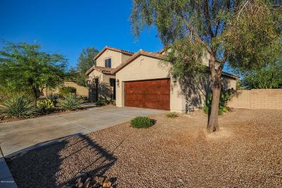Pima County Single Family Home For Sale: 11466 N Adobe Village Place