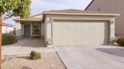 Sahuarita Single Family Home For Sale: 1095 W Calle Vista De Suenos
