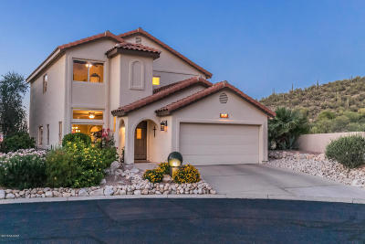 Oro Valley Single Family Home For Sale: 1707 Deer Hollow Loop