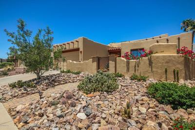 Tucson Single Family Home For Sale: 3366 W Overton Heights Drive