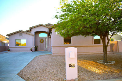 Tucson Single Family Home For Sale: 844 S Deer Meadow Loop