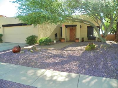 Pima County, Pinal County Single Family Home Active Contingent: 271 N Eastern Slope Loop