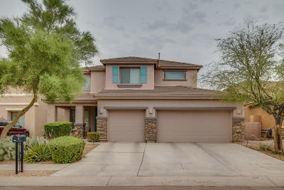Tucson Single Family Home For Sale: 6524 W Smoky Falls Way SW