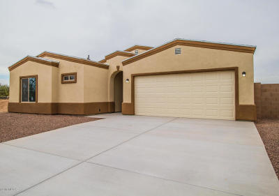 Pima County Single Family Home For Sale: 5904 S Alvord Place S