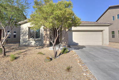 Sahuarita Single Family Home For Sale: 1131 E Madera Grove Lane