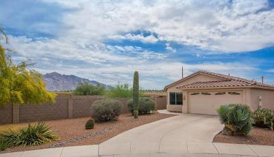 Pima County Single Family Home For Sale: 8929 N Velvet Mesquite Place