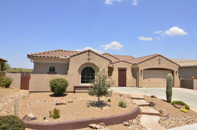 Pima County Single Family Home For Sale: 13672 N Tessali Way