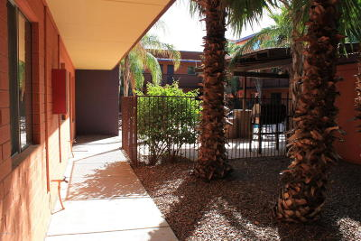 Tucson Condo For Sale: 55 N Cherry Avenue #100