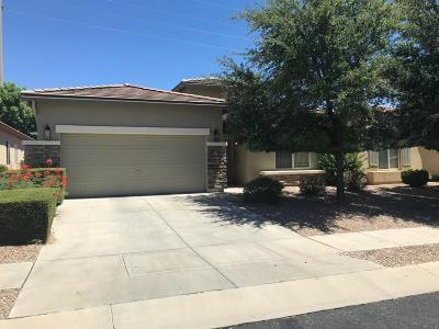 Tucson Single Family Home For Sale: 9555 E Corte Del Sol Brillante