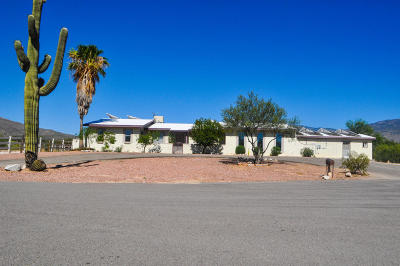 Tucson Single Family Home For Sale: 12530 E Tanque Verde Road