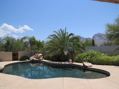 Pima County Single Family Home For Sale: 10756 N Pomegranate Drive