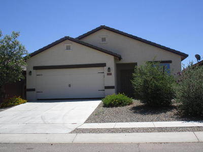 Tucson Single Family Home For Sale: 6719 S Drift Boat Drive