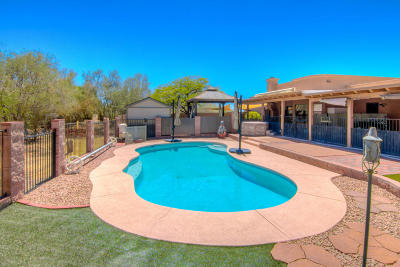 Pima County Single Family Home For Sale: 1421 W Placita Del Rey