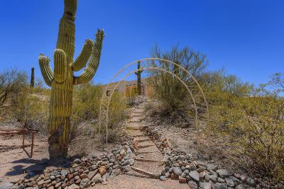 Tucson Single Family Home For Sale: 4070 W El Camino Del Cerro