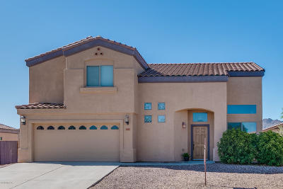 Tucson Single Family Home For Sale: 6310 W Ocotillo Meadow Drive