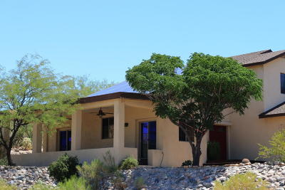 Tucson Single Family Home For Sale: 14675 N High Rock Road