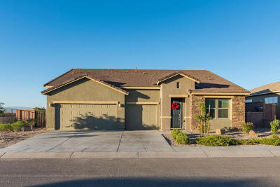 Sahuarita Single Family Home For Sale: 1443 E Stronghold Canyon Lane