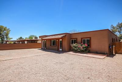 Pima County Single Family Home For Sale: 1518 S Treat Avenue