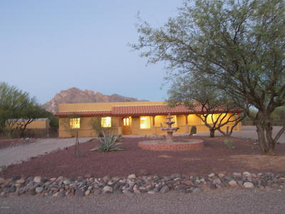 Tucson Single Family Home For Sale: 8580 N Mulberry Drive