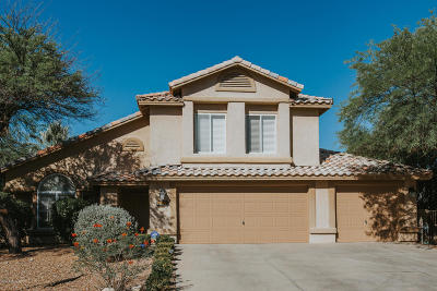Pima County Single Family Home For Sale: 1968 W Muirhead Loop