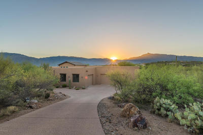 Pima County, Pinal County Single Family Home For Sale: 8447 S Long Bar Ranch Place