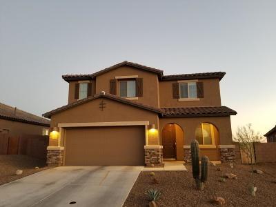Tucson Single Family Home For Sale: 60233 E Branding Iron Court