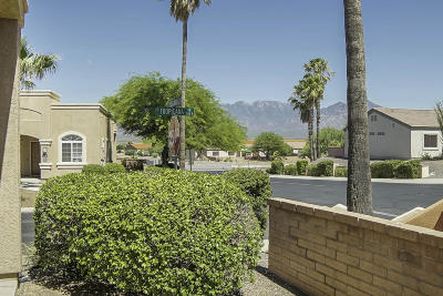 Pima County, Pinal County Townhouse For Sale: 1952 W Demetrie Loop