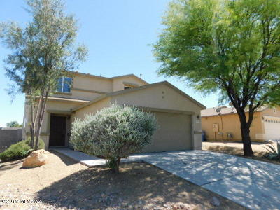 Pima County Single Family Home For Sale: 1073 W Camino Hombre Viejo