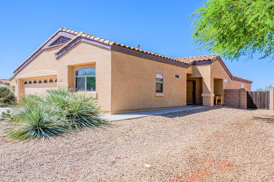 Vail AZ Single Family Home For Sale: $252,000