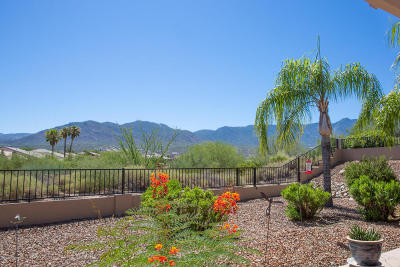 Tucson Single Family Home For Sale: 36943 S Stoney Cliff Drive