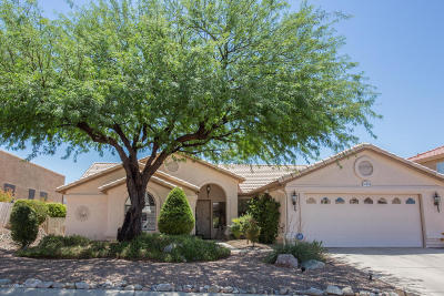 Pima County, Pinal County Single Family Home For Sale: 35909 Mesa Ridge Drive