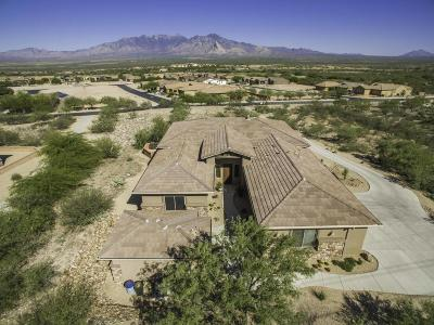 Pima County, Pinal County Single Family Home For Sale: 5524 S Atascosa Peak Drive