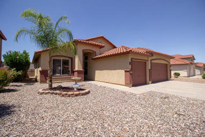 Pima County Single Family Home For Sale: 8968 E Rainsage Street