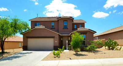 Pima County Single Family Home For Sale: 8261 N Winding Willow Way