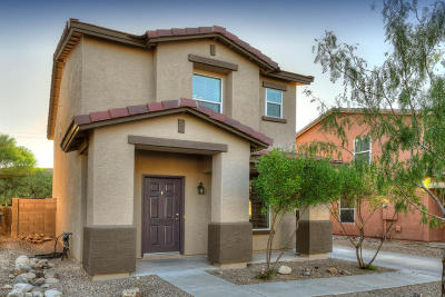 Pima County Single Family Home For Sale: 3225 N Surging Waters Place