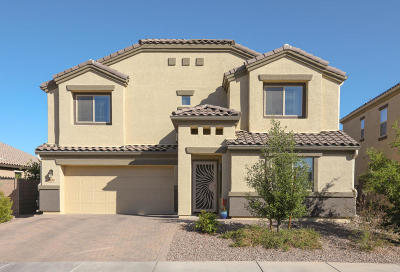 Marana Single Family Home For Sale: 8833 W Atlow Road
