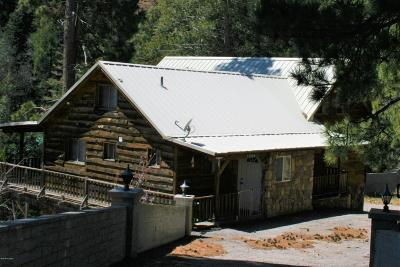 Mt. Lemmon Single Family Home For Sale: 11090 E Ski Run Road